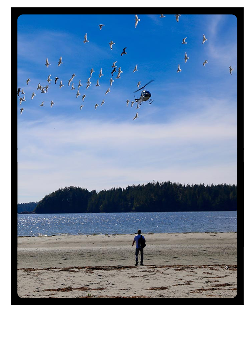 Helicopter to a remote beach with Clayoquot Wilderness Resort.